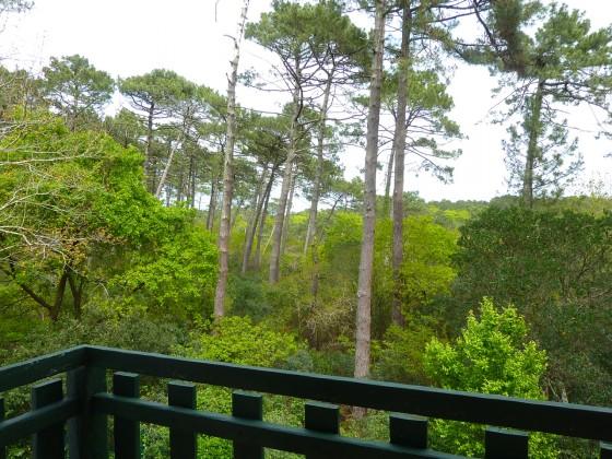 Villa à vendre avec vue dégagée sur la forêt du PYLA SUR MER