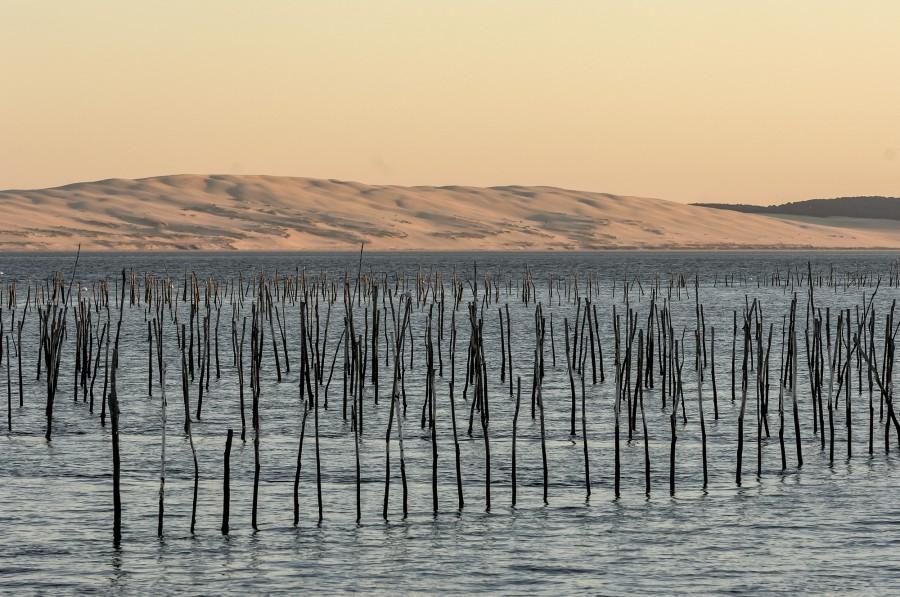 Des vacances ou des week-ends sur le Bassin d'Arcachon