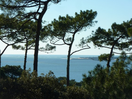 Villa d'architecte avec splendide vue mer - vendue BARNES PYLA 33115