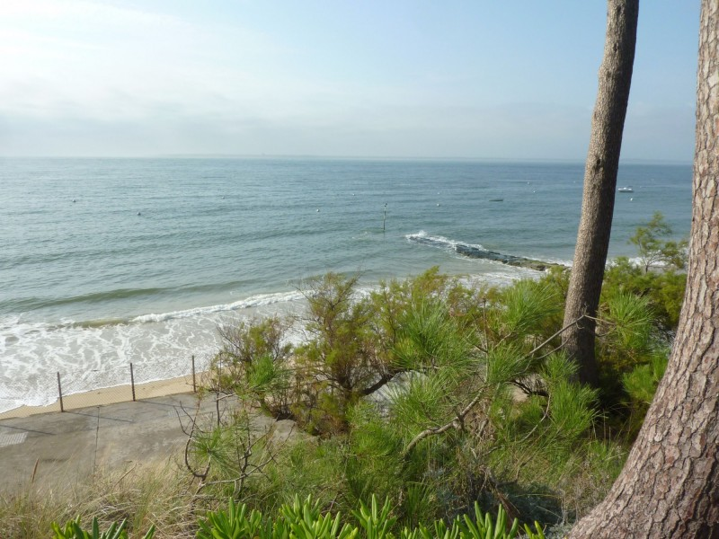marché immobilier des villas première ligne et bord de mer sur le Bassin d'Arcachon